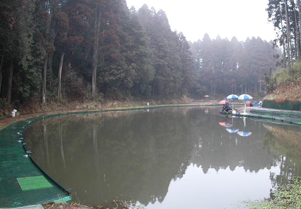 釣パラダイス