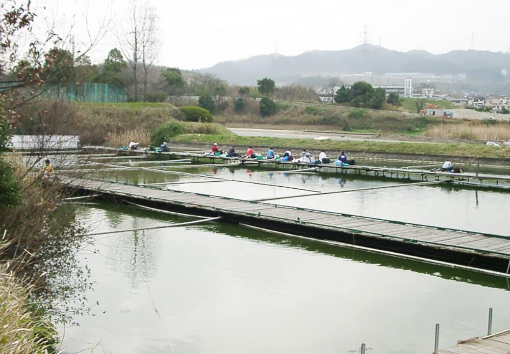 王仁公園新池釣センター