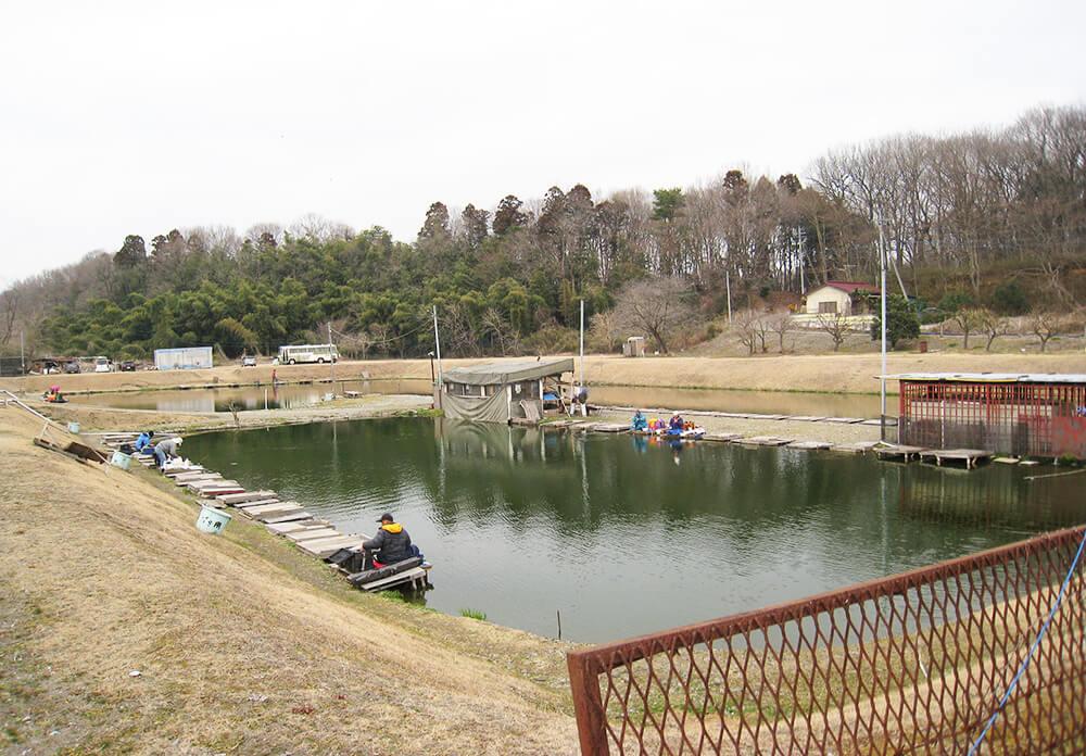 小山養魚場