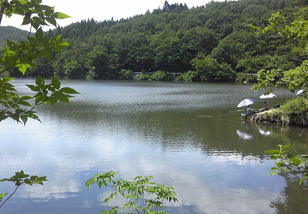 サイカチ沼