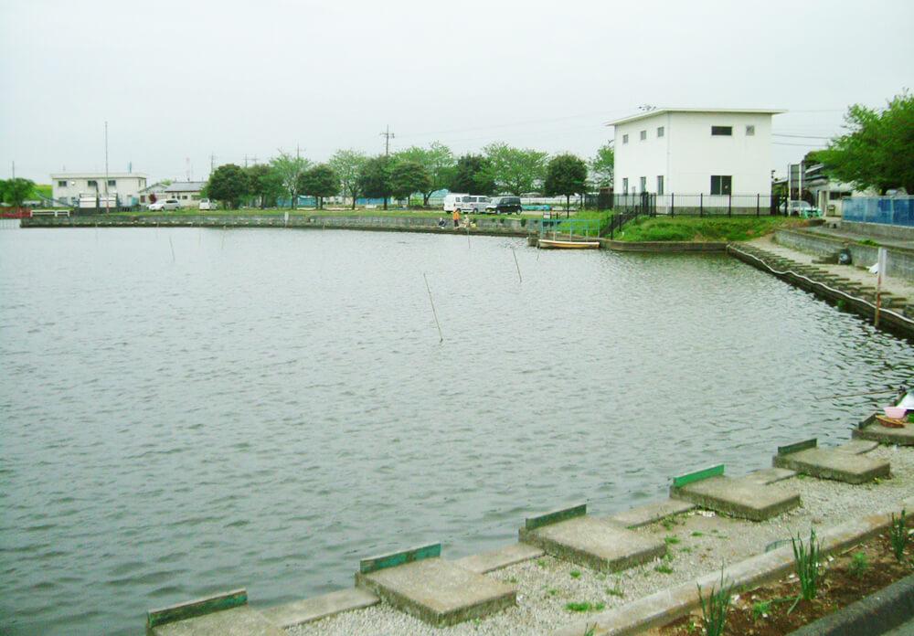 鳥羽井沼自然公園