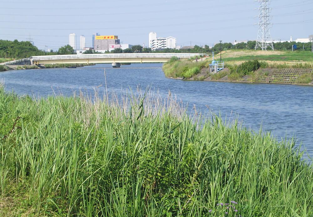 戸田川養魚場